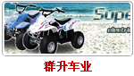 http://www.chinsun-vehicle.com